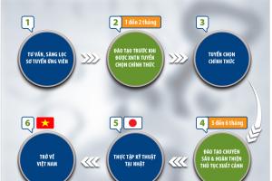 XKLĐ Nhật Bản và chương trình Thực tập sinh Kỹ năng có gì khác biệt?