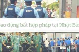 Dù không thích, nhưng Nhật Bản vẫn chọn lao động Việt Nam là vì?