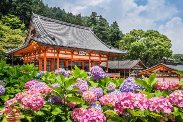 Du lịch Nhật Bản mùa hạ