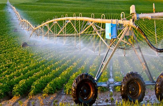 ngành nông nghiệp Nhật Bản
