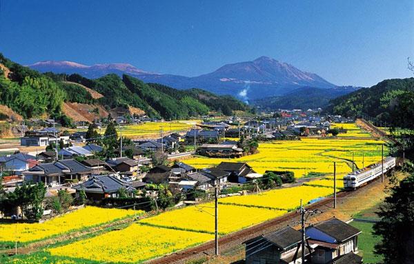 Xuất khẩu lao động tại tỉnh Kagoshima