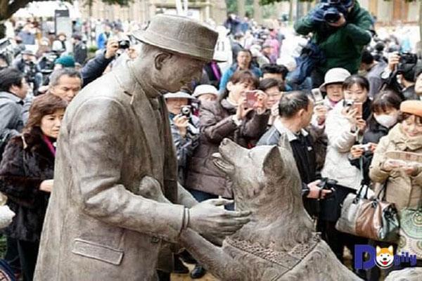 Bức tượng chú chó Hachiko được đoàn tụ cùng chủ