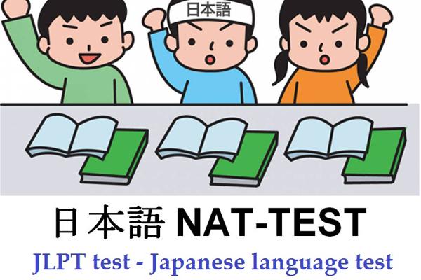 Nat Test là gì