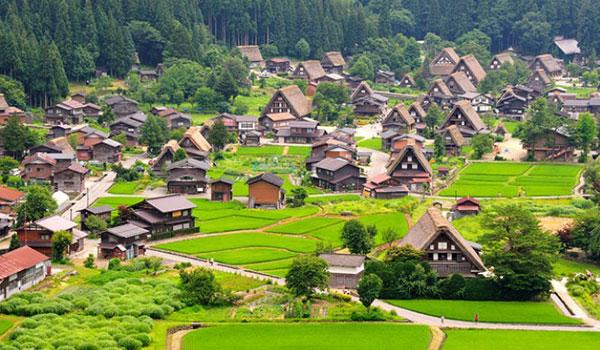 Ngôi làng cổ tích Shirakawa-go
