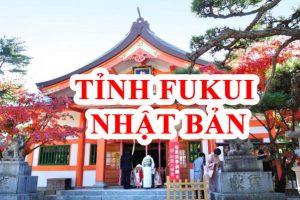 Tỉnh Fukui Nhật Bản vì sao lại thu hút được nhiều lao động Việt?
