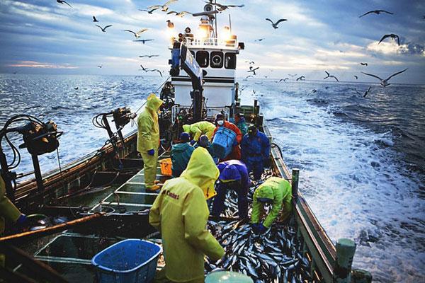 đánh bắt thủy hải sản ở nhật