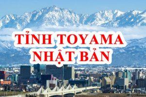 5 lý do nên chọn tỉnh Toyama Nhật Bản khi đi XKLĐ