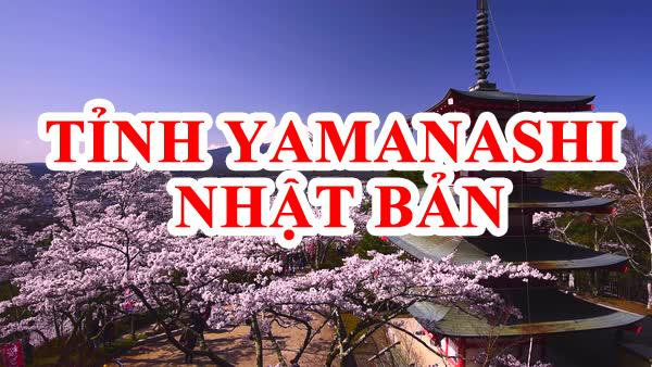 tỉnh Yamanashi Nhật Bản