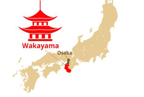 vị trí địa lý tỉnh wakayama nhật bản