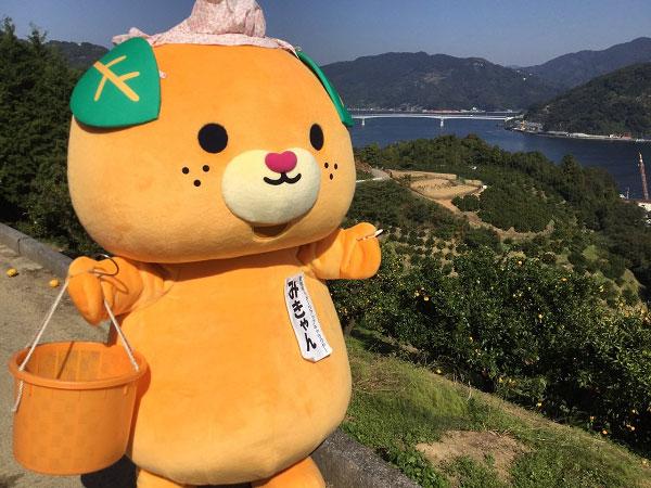 Mican – linh vật của tỉnh Ehime Nhật Bản.