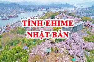 """Tỉnh Ehime Nhật Bản – """"Vùng đất lý tưởng khi đi XKLĐ"""""""