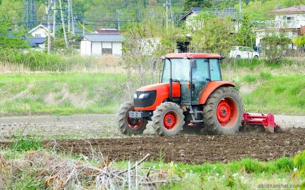 Nông nghiệp tỉnh tottori nhật bản