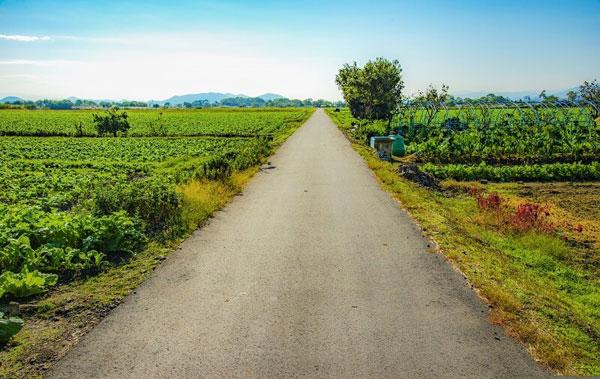 Shiga vẫn là một tỉnh nông nghiệp