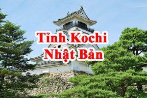 Tỉnh Kochi Nhật Bản – Vùng đất của NÔNG – LÂM – THỦY SẢN