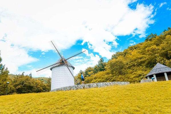 XKLĐ tại tỉnh Tokushima