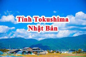 """Tỉnh Tokushima Nhật Bản – """"Thành phố của những dòng sông"""""""