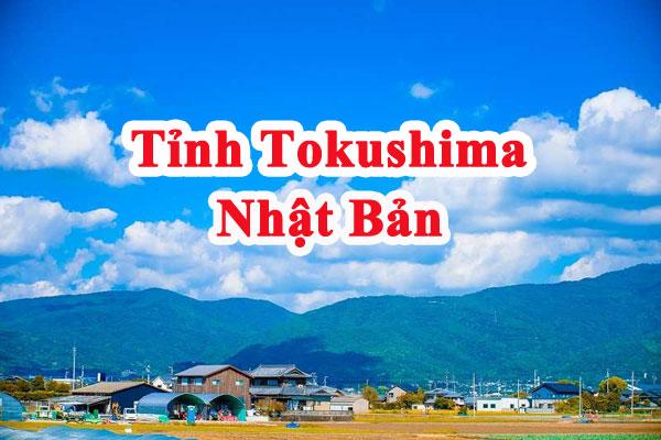 tỉnh Tokushima Nhật Bản