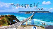 XKLĐ tại Tỉnh Yamaguchi Nhật Bản có gì đặc biệt?