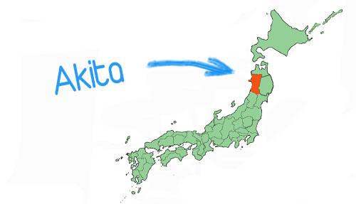 Vị trí địa lý tỉnh Akita Japan